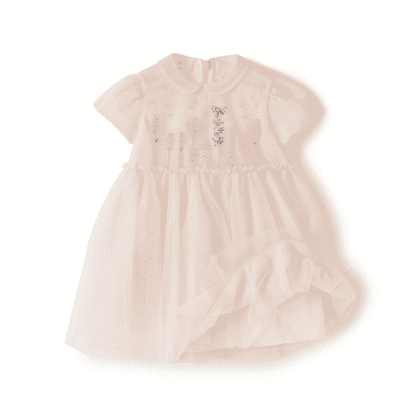 Rose Tulle Dress With Flowers Embroidery